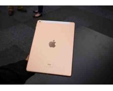 Apple iPad Gold Cellular