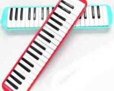 Melodica Bee 37K